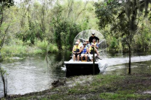 Airboat tour rides Florida alligators best