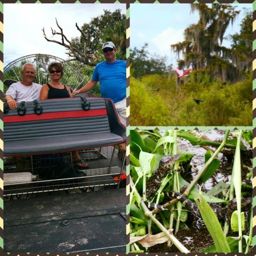 Airboat tour rides Florida alligators george puntagorda