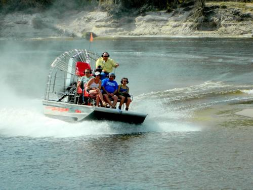 peacerivercharters airboat tours rides alligators wildlife nature 519-2