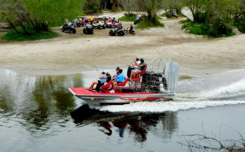 peacerivercharters airboat tours rides alligators wildlife nature 519