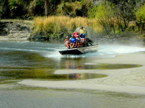 peacerivercharters airboat tours rides alligators wildlife nature 520-2-1